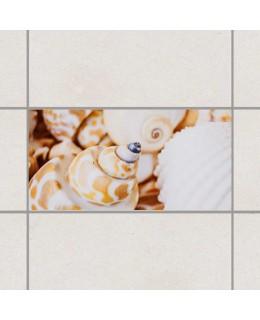 Мидени черупки - деко стикери за плочки