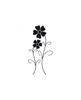 Двойка нежни цветя