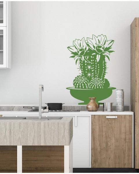 Кашпа с кактус