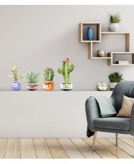 Цветни кактуси и секуленти