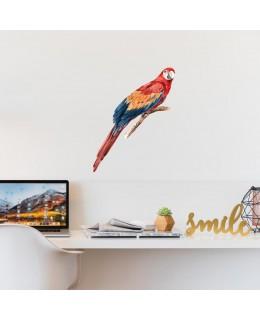 Цветен папагал