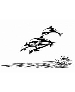 Семейство Делфини