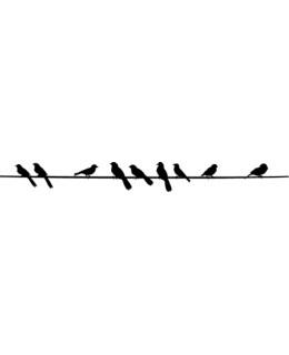 Птици на жица