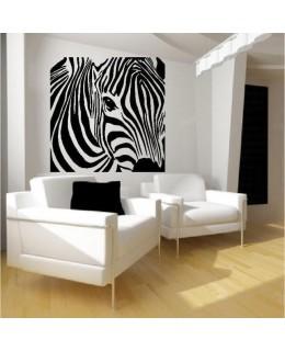 Окото на зебрата