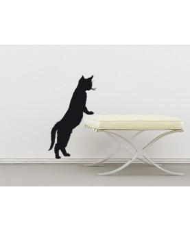 Малко котенце