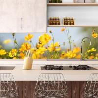 Цветна светлина - гръб за кухня