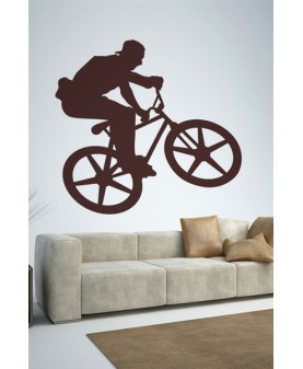 Фристайл колоездач