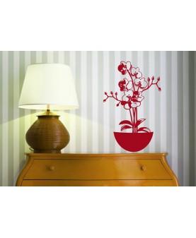 Стайна Орхидея