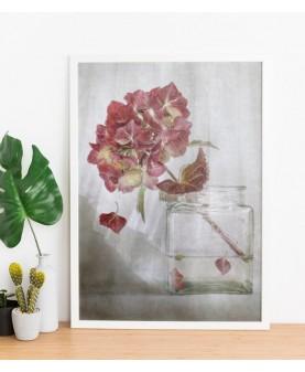 Стрък хортензия - Картина