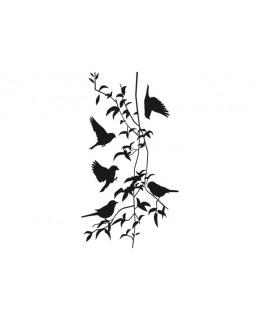 Лиани и птици