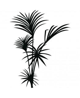 Стайна палма
